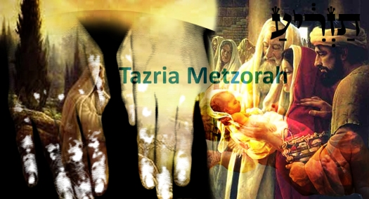 Tazria-Metzorah